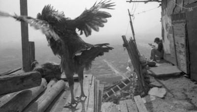 Muestra fotográfica recorre los recovecos del pasado de La Victoria