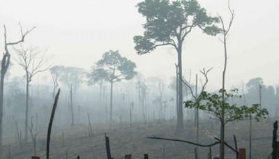 Congreso: Se aprueba el predictamen de la ley de cambio climático