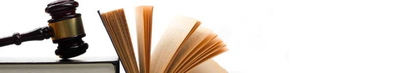 artigo-andre-vieira-imunidades-parlamentares-formal-e-material