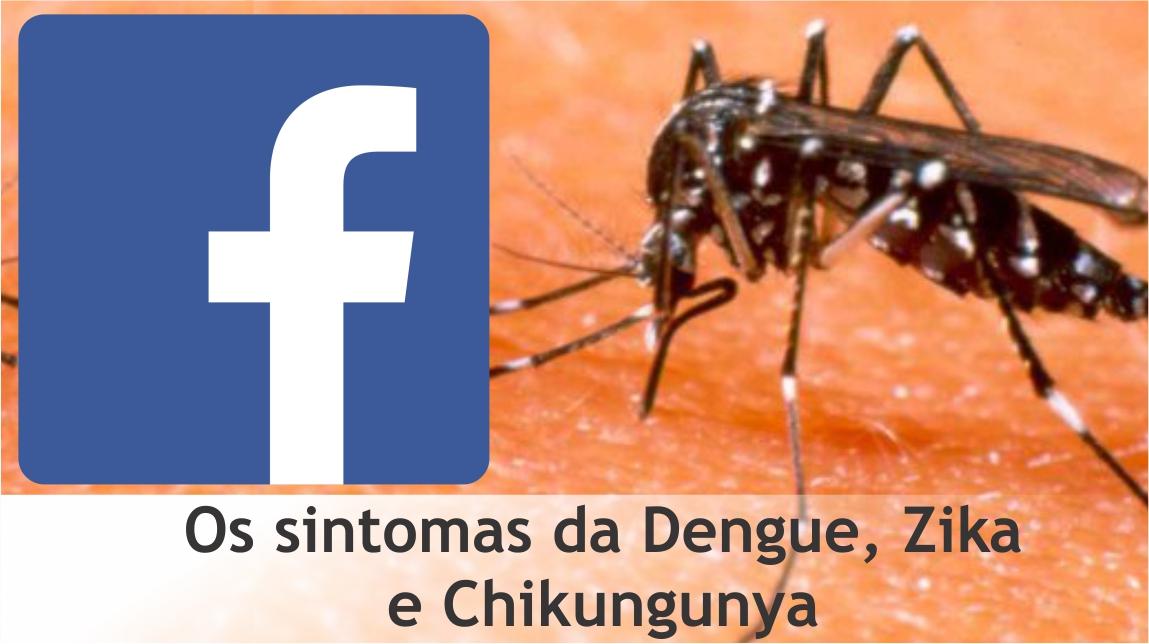 Sintomas Mosquito