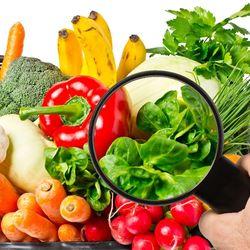 Conservación adecuada de Alimentos