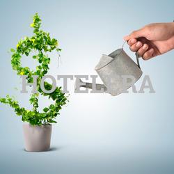 Competitividad y Rentabilidad en la Empresa Hotelera