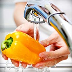 Seguridad e Higiene en el Sector Hotelero Gastronómico