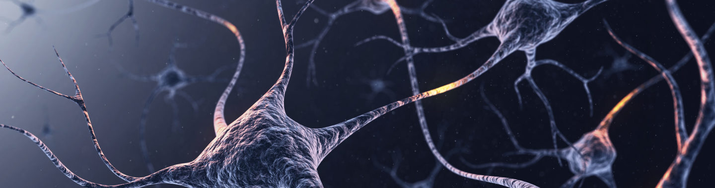 Jul24 gettyimages 582759294 neurons scaled