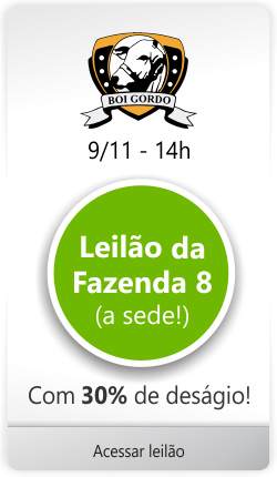Banner leilão Boi Gordo