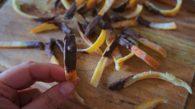 Receita de Casquinha de Laranja Cristalizada com Ponta de Chocolate