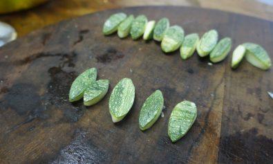 Torneado em Zucchini :(
