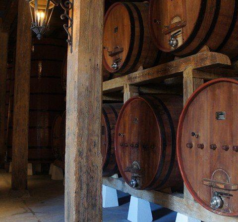 Barris de vinho na Vinícola Salvador