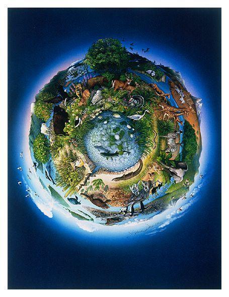 Quais os principais fatores relacionados ao desequilíbrio ecológico?