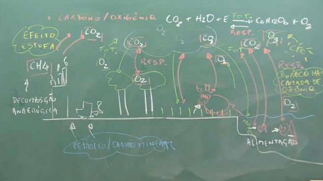 bio-ciclosbio-oda2