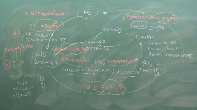 bio-ciclosbio-oda3
