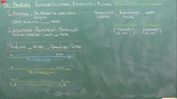 bio-sucessao ecologica3