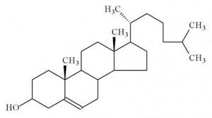 O que são lipídios, proteínas e vitaminas?