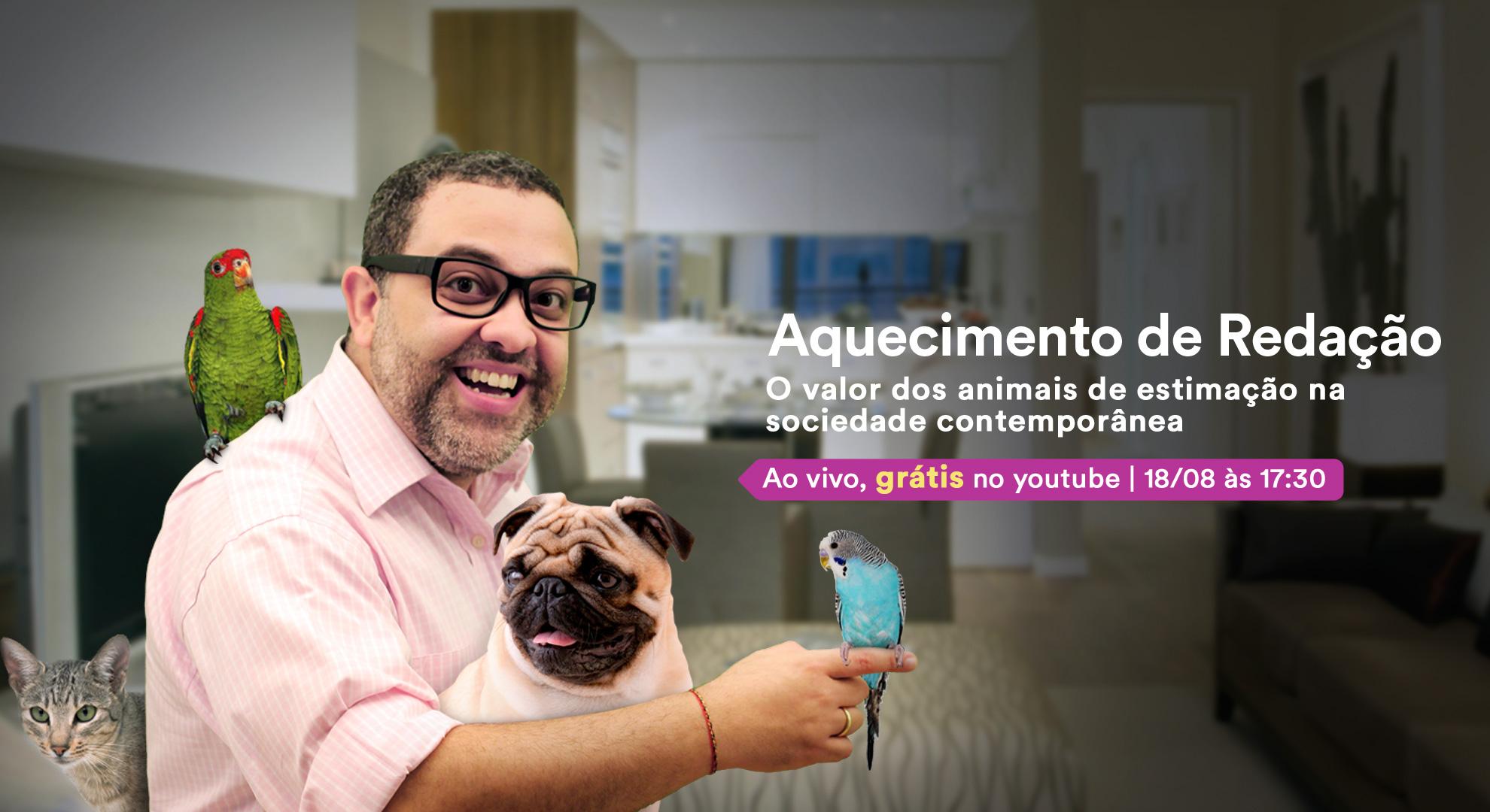 BlogPost_AnimaisDomesticos_01