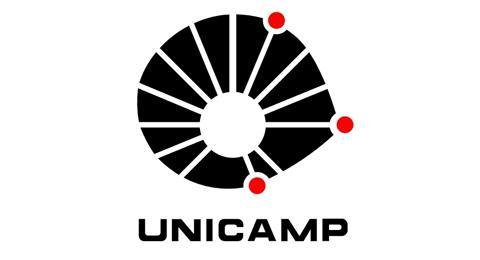 unicamp 2016