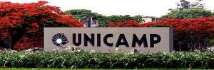 vestibular unicamp