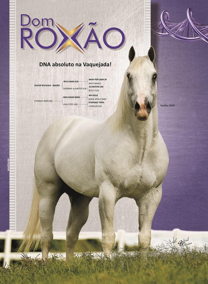 Dom-roxao-eternalady-4