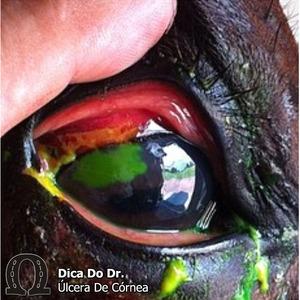 Ulcera-de-cornea
