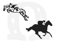 Concurso-completo-de-equitacao
