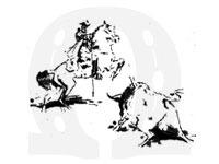 Corrida-de-touro-a-portuguesa