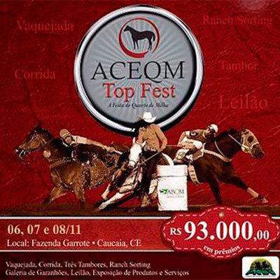 2015-11-aceqmtopfest