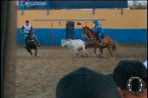 2015-11-parquelourivalpereira(1)