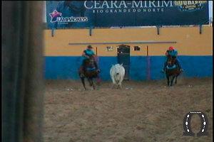 2015-11-parquelourivalpereira(39)