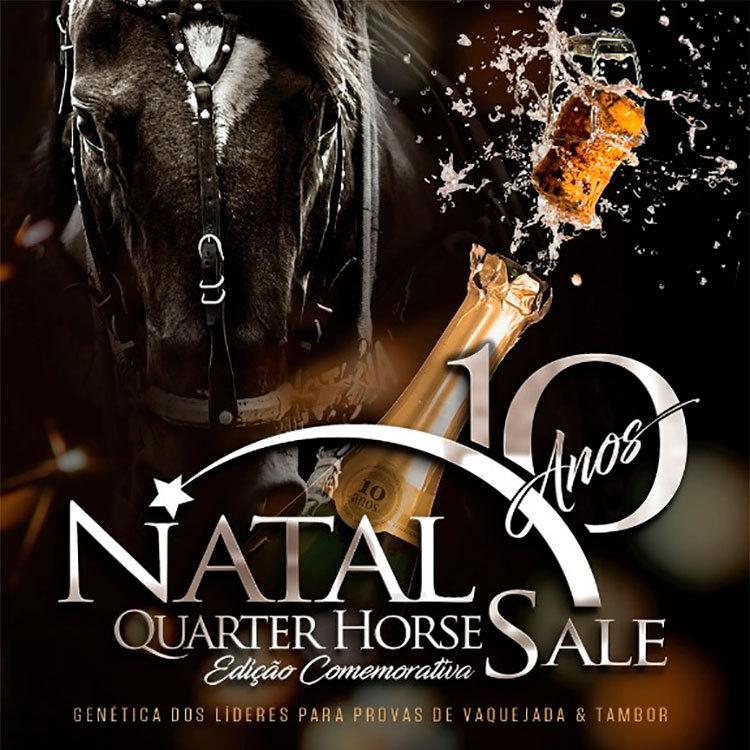 2017-07-leilaonatalquarterhorse2