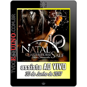 Tv-2017-06-30-leilaonatalquarterhorse-apresentacaolote