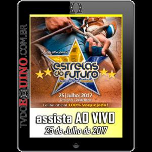 Tv-2017-07-25-leilaoestrelasdofuturo
