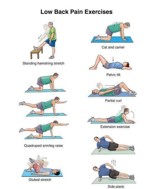 exercicios hernia de disco