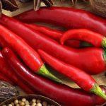 Alimentos termogênicos: aliados para aumentar nosso metabolismo!