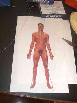 CIMG2572 Um boneco em 24 horas   O homem planta