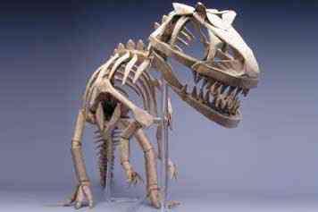 origamiallosaurus Origamis incríveis. Aprenda a fazer.