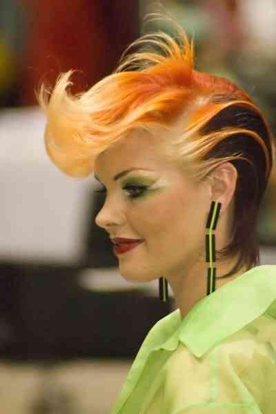hairworldchicago19yz2 Fotos bizarras de uma exposição de penteados