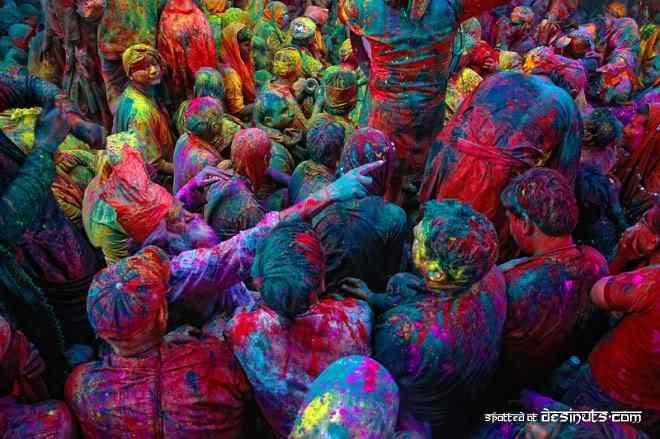 cores Celebrando as cores