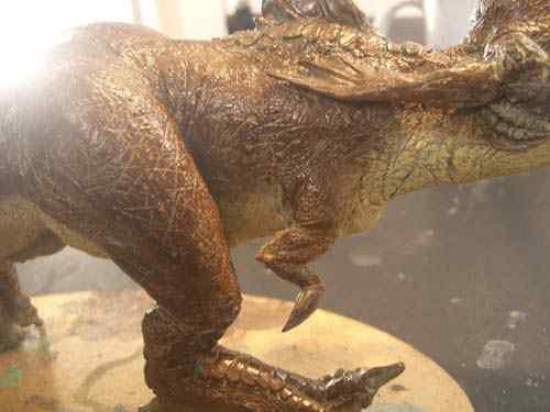 CIMG0627 Aqua Rex 4   Finalização e pintura