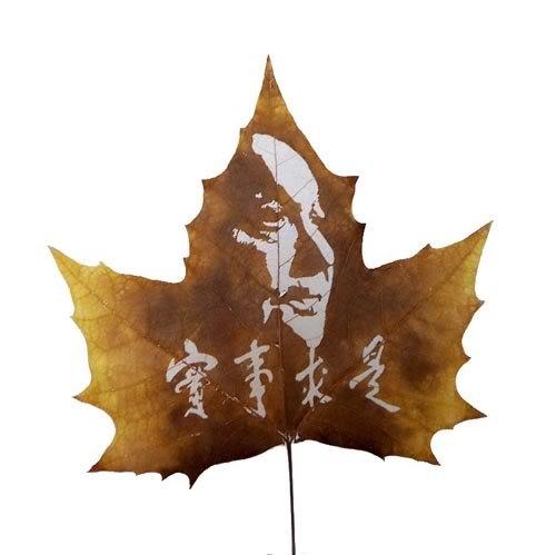 20091222144058675 Leaf carving   a arte de esculpir em folhas