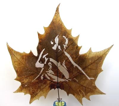 DCC Leaf carving   a arte de esculpir em folhas