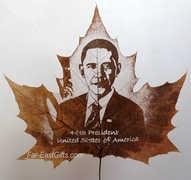 PVCEXUX5YINQRVJUS1 Leaf carving   a arte de esculpir em folhas