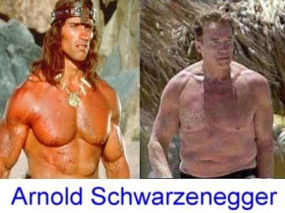 Schwarzenegger Celebridades ontem e hoje