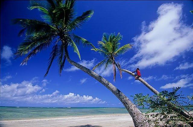 boipeba Dez ilhas interessantes