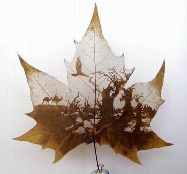 leaves carving masterpieces 06 Leaf carving   a arte de esculpir em folhas