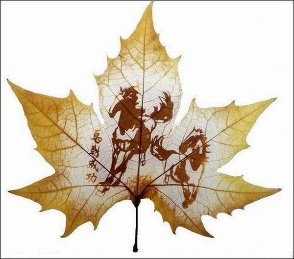 leaves carving masterpieces 12 Leaf carving   a arte de esculpir em folhas