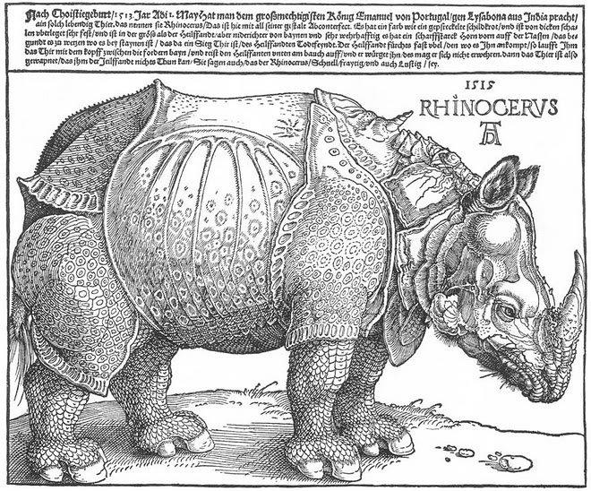 Rhinocervs1515 AlbrechtDrer Fotos de fantasmas