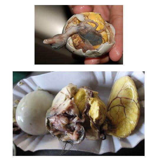 balut Top 10 das comidas mais nojentas do mundo