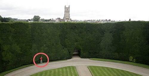 40ft high hedge Mundo gigante   Um apanhado de coisas gigantes da web