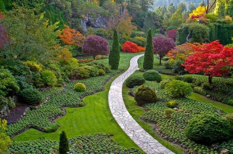 1229383752Kgh389P O jardim mais bonito do mundo