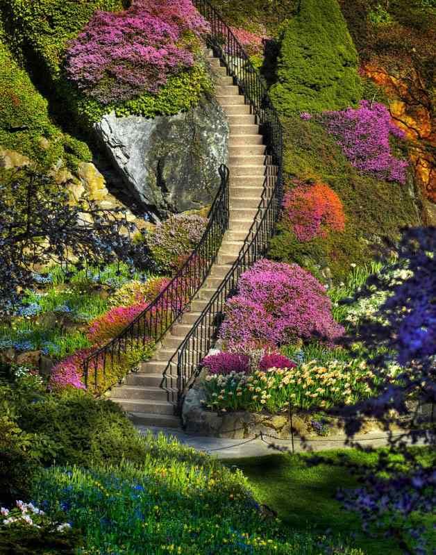 3607528694 320d9e375d b O jardim mais bonito do mundo