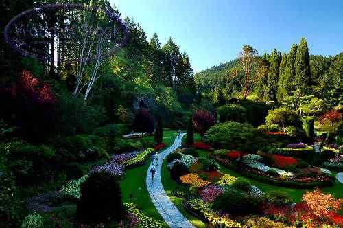 TAW2169 O jardim mais bonito do mundo